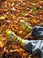 Bee Boots (2876350428).jpg