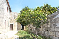 Beit Yad La-Banim, Oliphent house in Dalyat al-Karmel IMG 6148.JPG