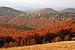 Beskydy autumn.jpg