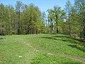 Bezhitskiy rayon, Bryansk, Bryanskaya oblast', Russia - panoramio (155).jpg