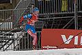 Biathlon Oberhof 2013-030.jpg