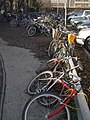 Bikes on Station Road, Cambridge - geograph.org.uk - 614572.jpg