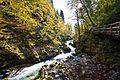 Bled - Vintgar Gorge - Radovna River (6318599587).jpg