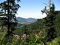 Blick über Gernsbach, Selbach bis Ebersteinburg, Schwarzwald, black forest, forêt noire - panoramio.jpg