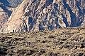 Blue Diamond Hill hikers 1.jpg