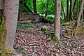 Bošířany ruiny budov (2).jpg