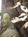 Bodhi Tree (Whiteleaf) of Wat Hua Hat 0.JPG