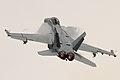Boeing FA-18F Super Hornet 11 (7567982574).jpg