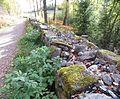 Bogstad Gamleveien ved Strömsbraaten rk 167237 IMG 1878.JPG