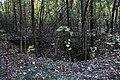 Bombentrichter - panoramio.jpg