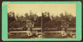 Boom house, Ambijegis Lake, by Hinds, A. L., fl. 1870-1879.png
