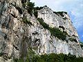 Bosco di Frasassi Ancona rocce.JPG