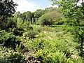 Botanischer Garten, Frankfurt am Main - DSC02662.JPG