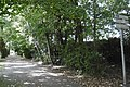 Branche de Croix 8 entrée de la véloroute à Croix.jpg