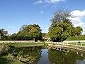 Brantingham Pond - geograph.org.uk - 589274.jpg