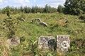 Briceni Jewish Cemetery 34.JPG