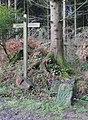 Bridleway junction near Furnace Pond - geograph.org.uk - 1611394.jpg