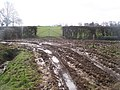 Bridleway meets footpath in Hazeldene Farm - geograph.org.uk - 1207080.jpg