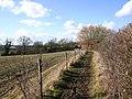 Bridleway to Lower Clopton - geograph.org.uk - 1730777.jpg