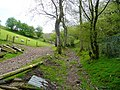 Bridleway to Sugarloaf (Y Fal)1 - geograph.org.uk - 1298384.jpg