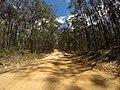 Brooman NSW 2538, Australia - panoramio (122).jpg