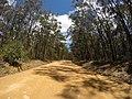 Brooman NSW 2538, Australia - panoramio (134).jpg