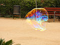 Bubbles in the park, Barcelona (4983834120).jpg