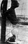 Buchenwald-J-Rouard-26.jpg