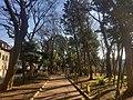 Bunko no mori park - Shinagawa - Feb 10 2020 various.jpeg