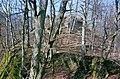 Burgruine-Hattstein-B-23-JR-2004-03-28.jpg
