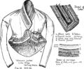 Burmese Textiles Fig12.png