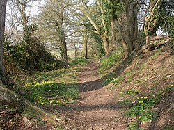 Burton, Avon Valley Path - geograph.org.uk - 1214261.jpg