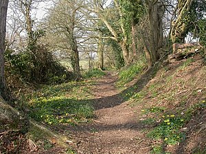 Avon Valley Path - Between Winkton and Burton in Dorset