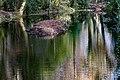 Bushy Park, Dublin -123677 (31061072142).jpg