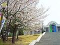 Buzcoz soonchunhyang University.JPG