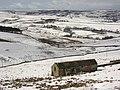 Byerhope valley - geograph.org.uk - 752521.jpg