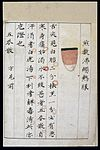 C14 Chinese tongue diagnosis chart Wellcome L0039598.jpg