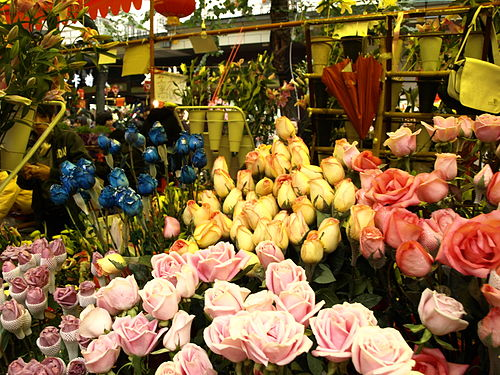 CNY Fair Canton 2010.jpg