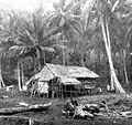 COLLECTIE TROPENMUSEUM Woning van een vissersfamilie op Pulau Lembeh TMnr 10016978.jpg