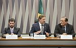 CRA - Comissão de Agricultura e Reforma Agrária (26860701790).jpg