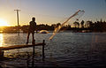 CSIRO ScienceImage 2657 Sunset at a Prawn Farm.jpg