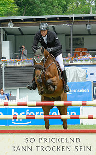 Marc Houtzager equestrian