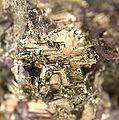 Calaverite-Fluorite-174247.jpg