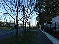 Calle Matienzo, Ciudad Jardín, Buenos Aires, Sep-06 - panoramio.jpg