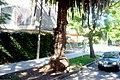 Calle Saldanha de Gamma esquina Gral. R. Riveros - panoramio.jpg