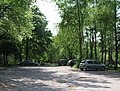 Car park in Cowdray Forest - geograph.org.uk - 420389.jpg