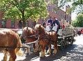 Carlsberg horse-drawn brewery wagon fl2.jpg