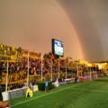 Carminatti-arcoiris.png