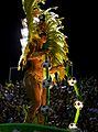 Carnaval 2014 - Rio de Janeiro (12973783455).jpg