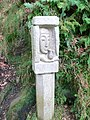 Carving - geograph.org.uk - 1549524.jpg